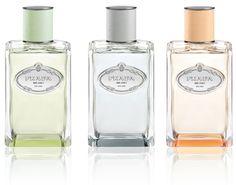 Les parfums Infusions de Prada bouteilles de parfums flacons vintage http://www.vogue.fr/beaute/buzz-du-jour/diaporama/les-infusions-de-prada/21199