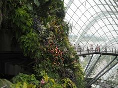 Gardens by the Bay 18 Marina Gardens Drive, Singapore The Marina Bay Sands hotel is a key feature of the…