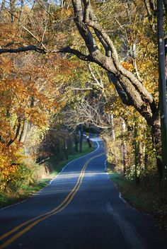 A Chester County Pennsylvania Back Road In The Fall West Chadds