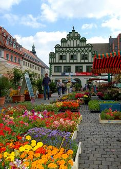 The Town House in Weimar's Market Square, Weimar_ Germany | The green-white building in Renaissance style at the eastern part of the market square was built between 1526 and 1547.
