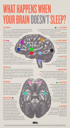 What Happens When Your Brain Doesn't Sleep? Infographic