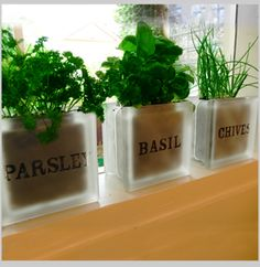 High Quality Garden Herb Pot Set   Parsley Basil Chives Herb Pots For Windowsills