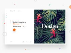 Split fold Design for blog by Divan Raj 🍃