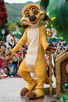 Information about Timon () and pictures of Timon including where to meet them and where to see them in parades and shows at the Disney Parks (Walt Disney World, Disneyland, Disneyland Paris, Tokyo Disneyland) Disney Characters Costumes, Disney World Characters, Character Costumes, Disney Dream, Disney Magic, Disney Cartoons, Disney Pixar, Universal Parks, The Lion King 1994