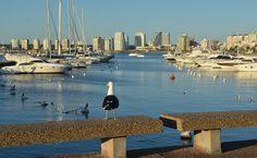 Porto de Punta, na Playa Mansa em Punta del Este, no Uruguai