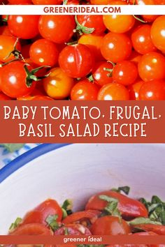 Looking for a Salad Recipe? With Tomatoes, Frugal and Basil? Then this recipe is perfect for you! Check out this Baby Tomato, Frugal, Basil Salad Recipe, Now! Healthy Salad Recipe | Baby Tomato, Frugal, Basil Salad Recipe | Baby Tomato Salad Recipe | #Nutrition #Recipe #Salad #HealthyFood #EatHealthy #SaladRecipe #VeganRecipe #VeganFood #vegetarian #Tomato #Frugal #BasilRecipe #BasilSalad