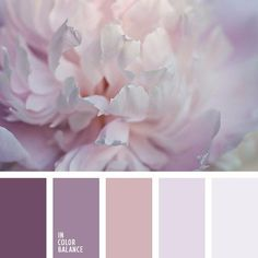 Pale shades of pink, lilac, brown and gray will perfectly fit the interior design in the room of a young amorous girl. Such gamma will underline that she i. Best Picture For wedding color palette purp Colour Pallette, Color Combos, Purple Palette, Silver Color Palette, Pastel Palette, Wedding Colors, Wedding Themes, Wedding Ideas, Mauve Wedding