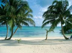 Ambergris Caye, Belize...I've been there and it really is surreal in its perfection!!