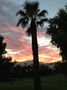 Palm Desert Sunset - by Janet Squire Desert Sunset, Palm Desert, Desert Colors, Sunrises, The Incredibles, Places, Outdoor, Beautiful, Beauty