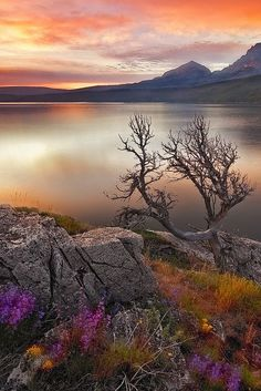 Glacier National Park. A Brilliant Sunrise by OhYo, via Flickr