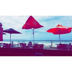 Breakfast views  #GreatOceanRoad by francescamunns