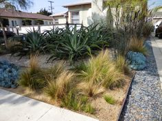 Mar Vista Green Garden Showcase: 12537 Preston Way - Cluster 3D