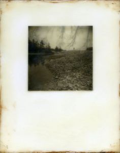 Encaustic - Vicki Reed Photography