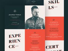 Resume by Jonathan Violassi