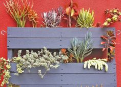 #Upcycled #pallets are popular — especially in gardening. #trendalert