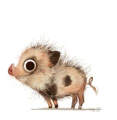 Weibke Rauer - piggy