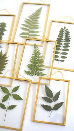 Framed pressed leaves - My CMS Pressed Flowers Frame, Pressed Leaves, Pressed Flower Art, Flower Frame, Framed Leaves, Diys Room Decor, Diy Wall Decor, Decor Ideas, Art Floral