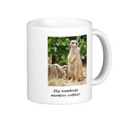 =>>Save on          Meerkat mug somebody mention coffee           Meerkat mug somebody mention coffee you will get best price offer lowest prices or diccount couponeHow to          Meerkat mug somebody mention coffee please follow the link to see fully reviews...Cleck Hot Deals >>> http://www.zazzle.com/meerkat_mug_somebody_mention_coffee-168558168073497291?rf=238627982471231924&zbar=1&tc=terrest