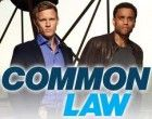 Watch Common Law Season 1 Episode 8 – Joint Custody  Summary: Wes and Travis investigate a cop's shooting and take care of the injured officer's police dog.