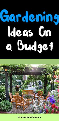 Click the link for more info Learn More About gardening tips Click the link for more information. Gardening Tips, Garden Design, Garden Ideas, Link, Landscape Designs, Landscaping Ideas, Backyard Ideas, Yard Design