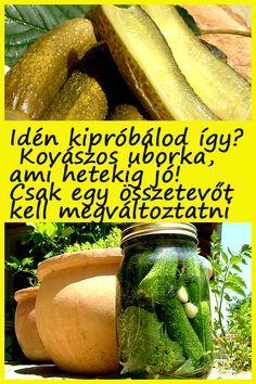 A kenyér helyett kipróbált módszer a ... #kovászos #uborka #nyár #recept
