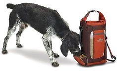 Dog Food And Hydration Travel Pack      Buy it now >>>>>   http://amzn.to/29yo7F0