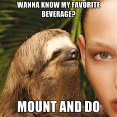 Lol rape sloth