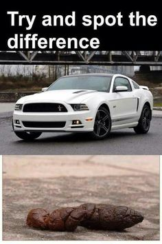 123 Best I Hate Fords Fan Page Images Chevy Vs Ford Truck Quotes