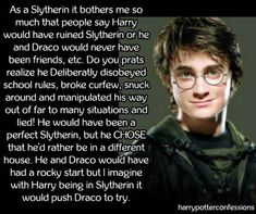 As a Slytherin it bothers me so much that people say Harry would...