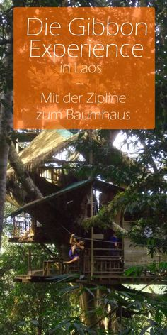 Die Gibbon Experience in Laos - Mit der Zipline ins Baumhaus - Götz Nitsche Laos, To Go, Wanderlust, Travel, Author, Travel Pictures, Travel Photography, Tree Houses, Travel Report