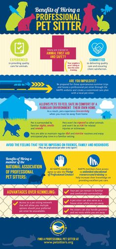 Professional Pet Sitter Infographic: There are so many benefits to hiring a professional pet sitter to care for your pets when you must be away from home. Check out this infographic for more details! Dog Walking Services, Pet Sitting Services, Pet Services, Pet Sitting Business, Dog Walking Business, Pet Sitter, Dog Daycare, Pet Health, Dog Grooming