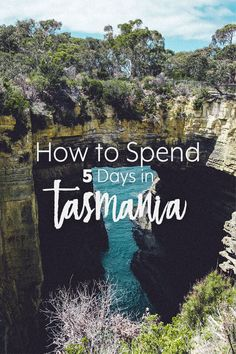 A guide on what to do in Tasmania, Australia if you have 5 days to spare. : A guide on what to do in Tasmania, Australia if you have 5 days to spare. Tasmania Road Trip, Tasmania Travel, Australia Travel Guide, Visit Australia, Australia Trip, Queensland Australia, Cool Places To Visit, Places To Travel, Places To Go