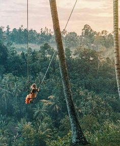How To Experience Ubud Off The Beaten Path Schwung via den tropischer Regenwald Ubud Bali verträumt Oh The Places You'll Go, Places To Travel, Travel Destinations, Places To Visit, Voyage Bali, Destination Voyage, Adventure Awaits, Adventure Travel, Adventure Holiday