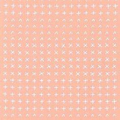 Karen Lewis - Blueberry Park - Flowerbed in Ice Peach