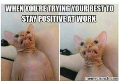 Employee Engagement Software Nurse humor - staying positive at work.Nurse humor - staying positive at work. Kpop Memes, Memes Humor, Funny Memes, Funny Work Meme, Cat Memes, Funny Shit, Funny Cute, Funny Stuff, Funny Things