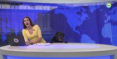 Rus haber spikerinin yüreğini ağzına getiren tüylü bir süpriz konuk meşhur oldu.Mir24 TV'de canlı yayına katılan sevimli köpek spikere zor anlar yaşattı. 1 dakikalık video YouTube'da 6 milyondan fazla izlendi.Linarte adlı sunucu önce sakin görünmeye çalıştı ancak köpek kendisine yaklaşınca sandalyeden düşercesine uzaklaşmaya çalıştı.'Ben bir kedi severim' şeklinde açıklama yapan sunucu, köpeğin kendisine zarar vermeyeceğini anlayınca sevmeye çalıştı ama tam da başaramadı.Olay...