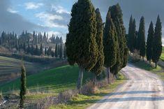 La strada Lauretana che va da Arbia ad Asciano vicino Siena