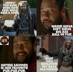 The Walking Dead #jerry #ezekiel #shiva #TBBT #thebigbangtheory crossover #softkitty #twd