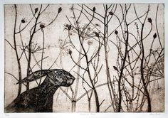 The Leveret: November Hare