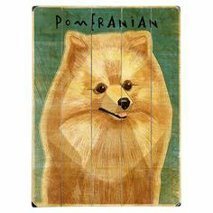 "Showcasing a charming Pomeranian portrait, this whimsical paneled wood wall decor adds an artful touch to your foyer or entryway.   Product: Wall decorConstruction Material: Wood Features: Ready to hang  Saw tooth hanger attached Dimensions: 16"" H x 12"" W"