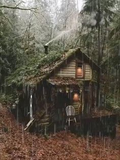 Cabin In The Woods, Cottage In The Woods, Cozy Cottage, Cottage Homes, Forest Cabin, Forest House, Forest Cottage, Mountain Cottage, Mountain Cabins
