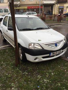 """NESIMȚIRE crasă! Angajații ITM Timiș """"calcă"""" pe fondurile europene și distrug spațiile verzi FOTO"""