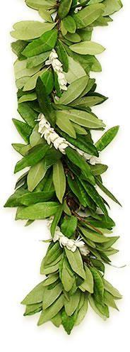 :: Lei   Double Maile Pikake   #wedding #hawaii #flowers