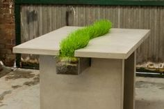 Our Harvest Table with real live wheatgrass. A replica of the Emily Wettstein timber table, this is a great feature piece #concrete #table