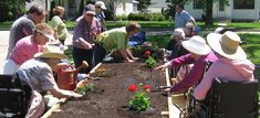The Benefits of Outdoor Activities For Aging Adults