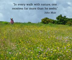 """""""In every walk with nature, one receive far more than he seeks."""" - This John Muir quote reminds us of Huckleberry Knob off the Cherohala Skyway, around mile marker 8. There is a parking area here, with good information on the trail that follows an old Forest Service road that goes through grassy areas and through a wooded patch to its terminus near the summit. From the parking area you will head north over Oak Knob to the Huckleberry summit. The round trip is roughly 2.4 miles."""