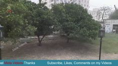 Heavy Thunder Storm in Islamabad - Meta Videos Thunderstorms, Movies Online, Videos, Lightning Storms, Storms, Video Clip