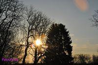 Die Sonne erwacht!