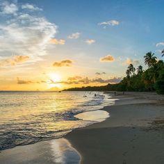 #Madinina vue par @yano97: Salines #sunset #Martinique #holidays #sea #sun #beach #westindies #france #ig_caribbean #martiniquetourisme #vacances #amazing #ig_martinique #beautiful #colorful #wonderful #caraibes #antilles #WeLike ! A voir sur Instagram : http://ift.tt/1U4fNsR