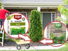 Czym nawozić tuje Walled Garden, Gardening, Sport, Diet, Compost, Deporte, Fenced Garden, Lawn And Garden, Sports